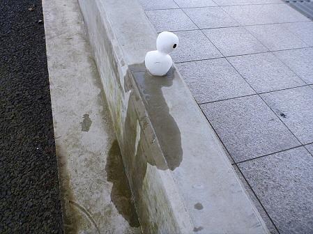 雪だるまん33号09(2011.11.18)