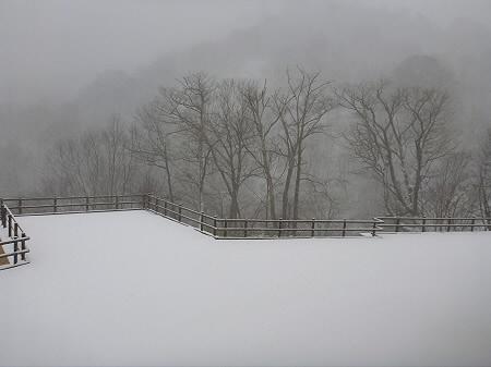 峡雲荘の外の景色01(2011.12.5)