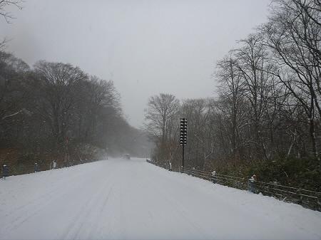 冬の帰り道01(2011.12.5)