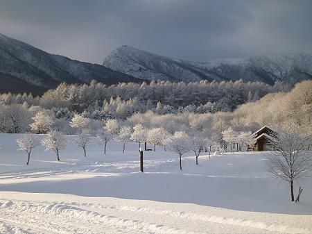 県民の森11(2011.12.21)