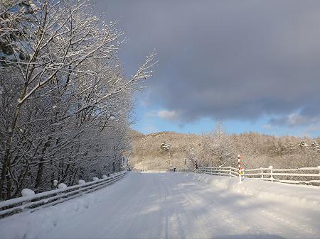 森の大橋01(2011.12.21)