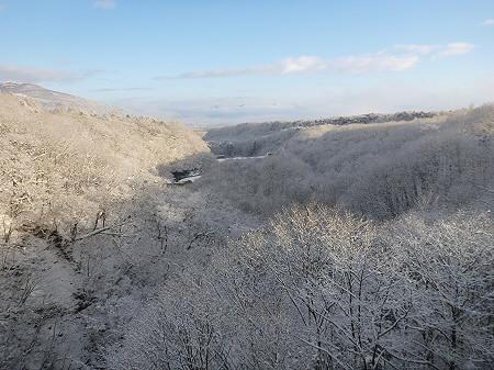 森の大橋05(2011.12.21)