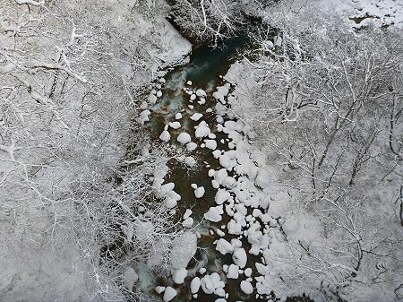 森の大橋09(2011.12.21)