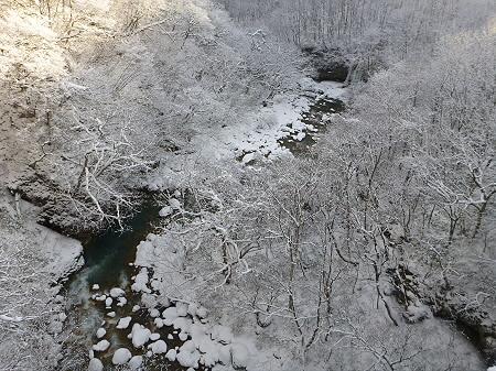 森の大橋10(2011.12.21)