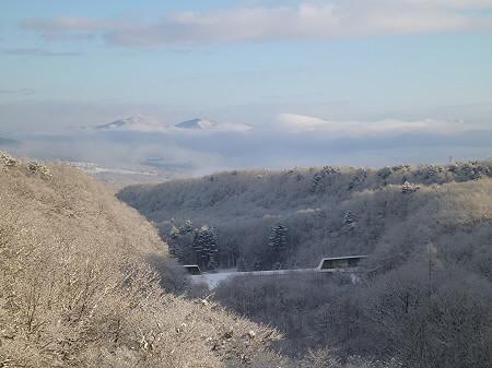 森の大橋11(2011.12.21)