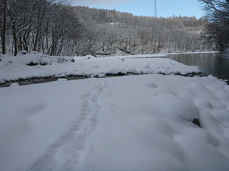 松川渓谷玄武岩10(2011.12.21)