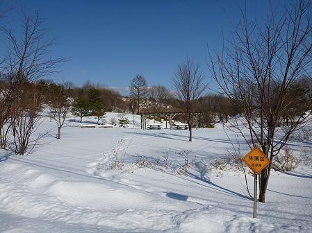 深雪のさくら公園02(2012.1.19)