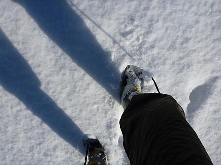 深雪のさくら公園03(2012.1.19)