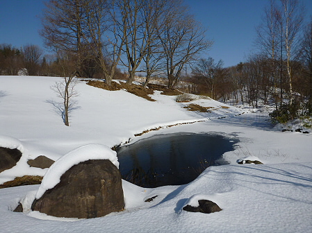 深雪のさくら公園07(2012.1.19)