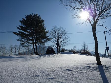 深雪のさくら公園09(2012.1.19)