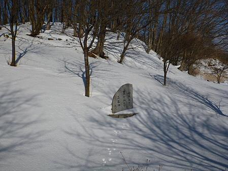 深雪のさくら公園18(2012.1.19)
