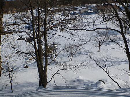 深雪のさくら公園24(2012.1.19)