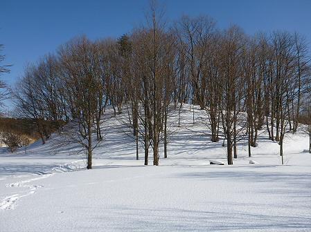 深雪のさくら公園30(2012.1.19)