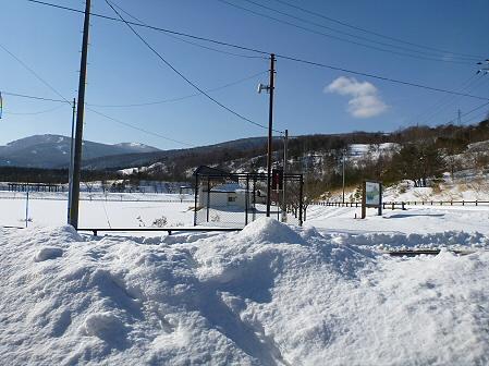 深雪のさくら公園41(2012.1.19)