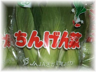 青梗菜-1