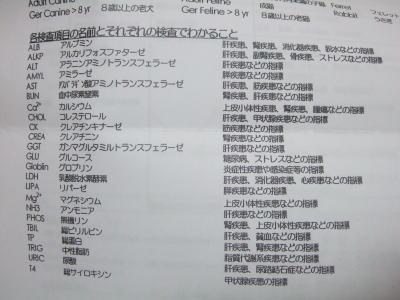血液検査 マーチ 6