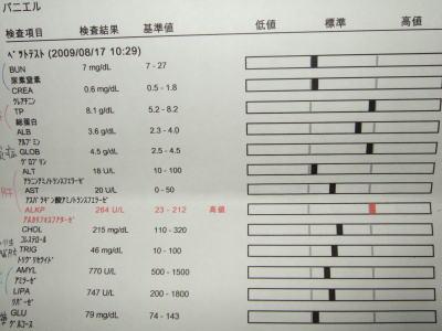 血液検査 マーチ 3