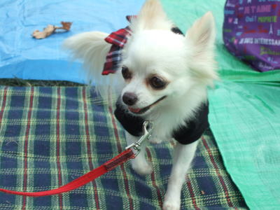 2009.10.17 昭和記念公園オフ会  7