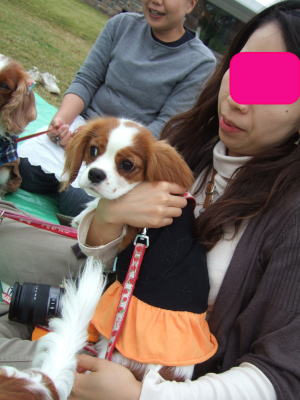 2009.10.17 昭和記念公園オフ会 18