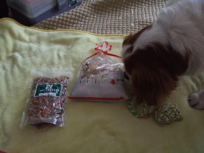 クッキーくんからのプレゼント 1