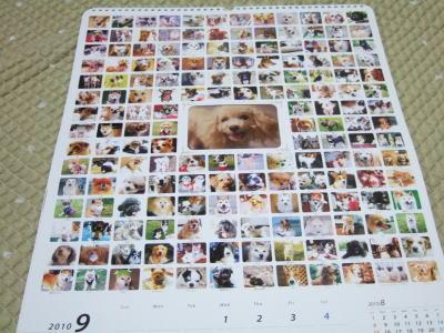 デビフ カレンダー 3