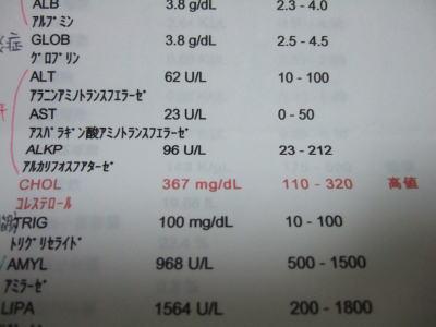 かれん血液検査 1