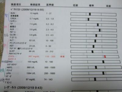かれん血液検査 2