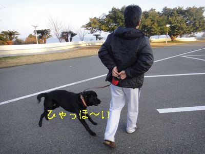 b2011 02 19_2996