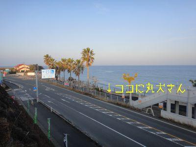 b2011 02 19_3006