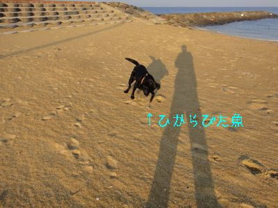 b2011 02 19_3033