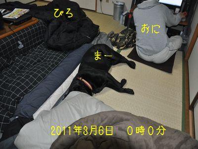 2011 03 06_3507