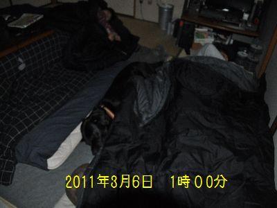 b2011 03 06_3513