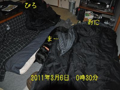 b2011 03 06_3510