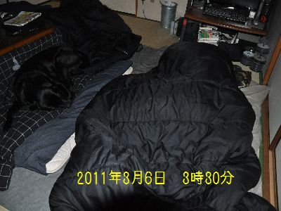 b2011 03 06_3528