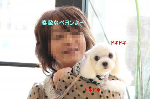 IMG_2849_convert_20111228084910.jpg
