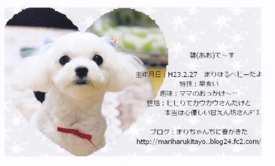 IMG_convert_20111216223045.jpg