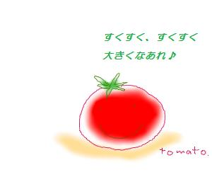 トマト(メッセージ)