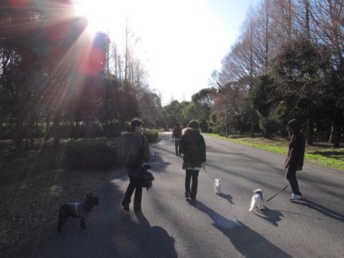お散歩開始~!