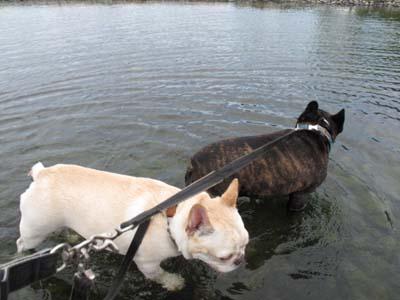 二人とも水遊びは好き