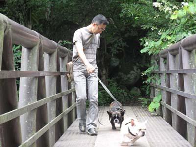 恐々歩いてる菊・咲ちゃんは平気だよ
