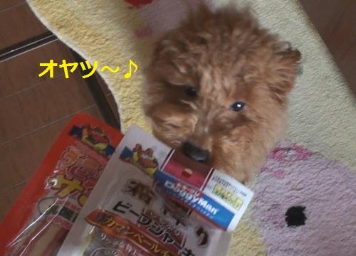 004_20110226000139.jpg