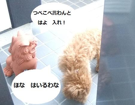 008_20110225000903.jpg