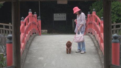 亀鶴公園 035