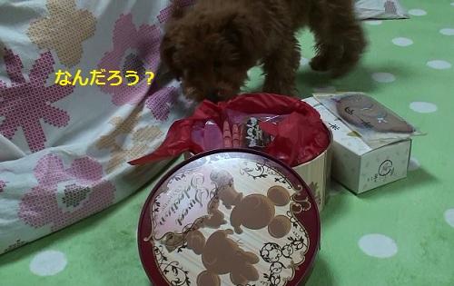 20100301190515(9).jpg