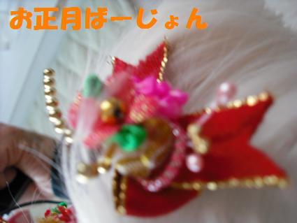 2009_0109コンデジ0065