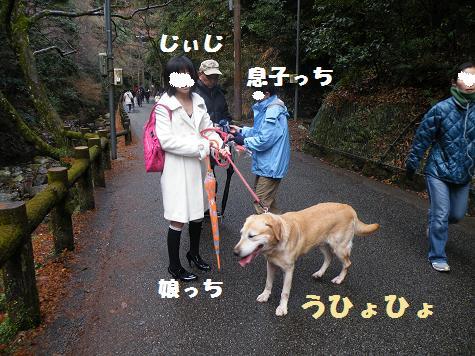 2009_01030090.jpg