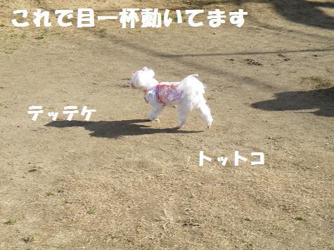 2009_01150020.jpg