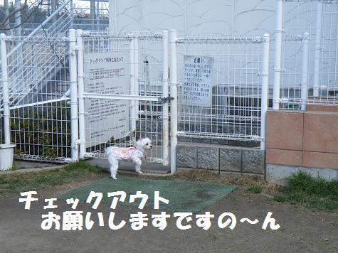 2009_01150030.jpg