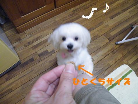 2009_06160015.jpg