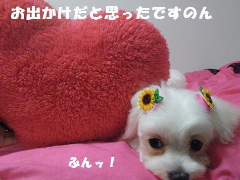 2009_07220038.jpg